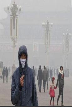 雾霾天气吃什么好 如何预防雾霾天气的危害-雾霾天气吃什么好 雾霾天图片