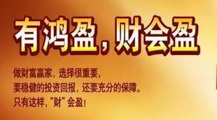 国寿鸿盈两全保险解析